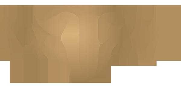 Erotična trgovina TPREDRZNA Logo